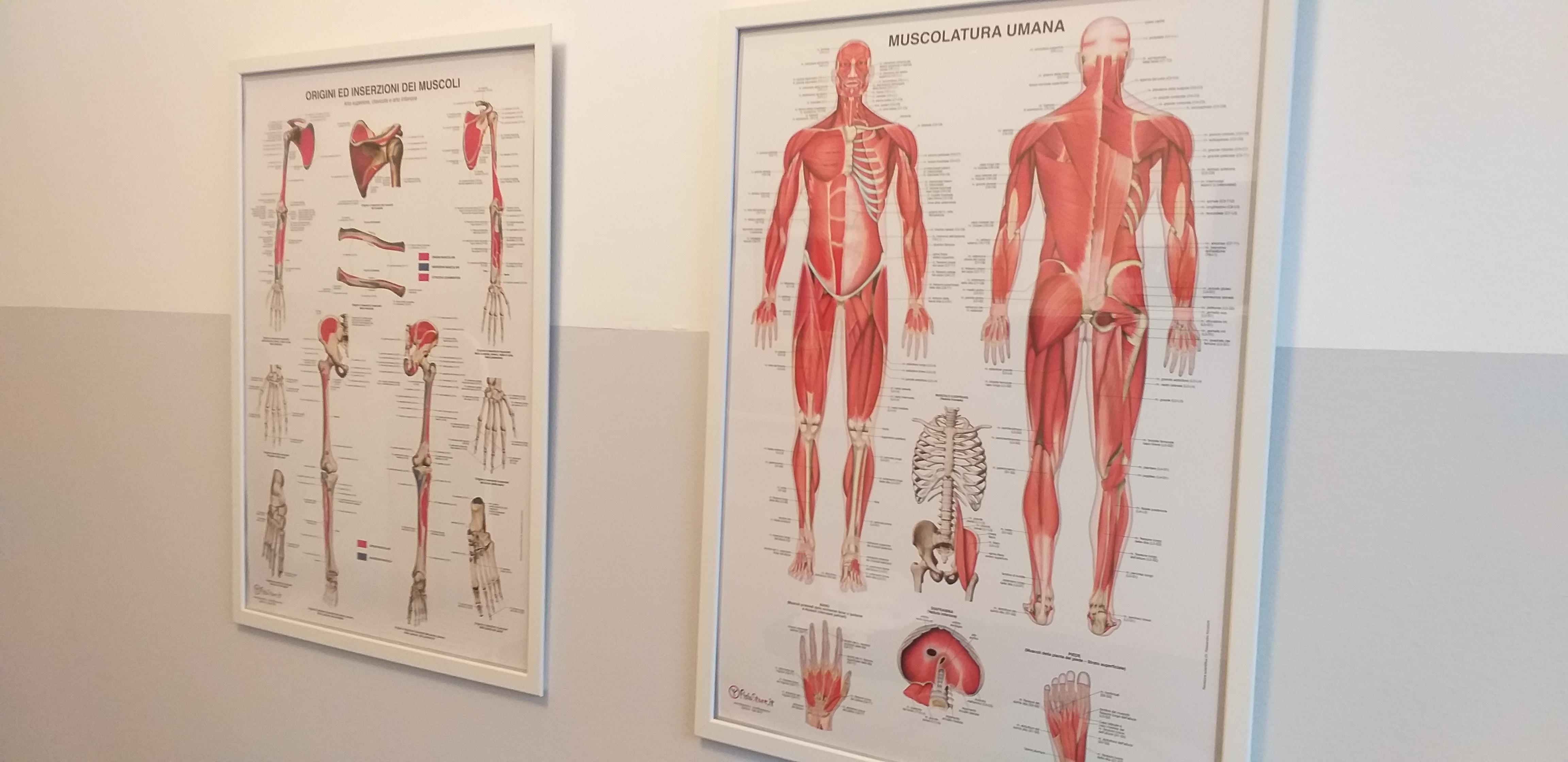 F3 Centro Massaggi a Trieste