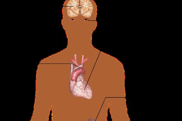 Perché è difficile raggiungere il valore ottimale della pressione arteriosa